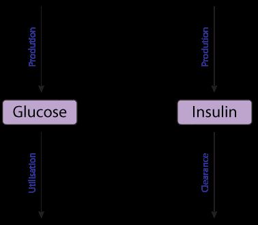 modeling the glucose insulin regulatory system and ultradian  : insulin diagram - findchart.co